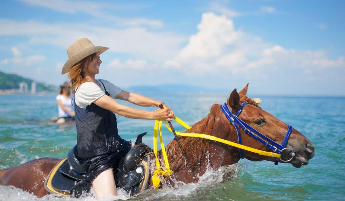 馬と海泳ぎ体験 ハーモニーファーム淡路
