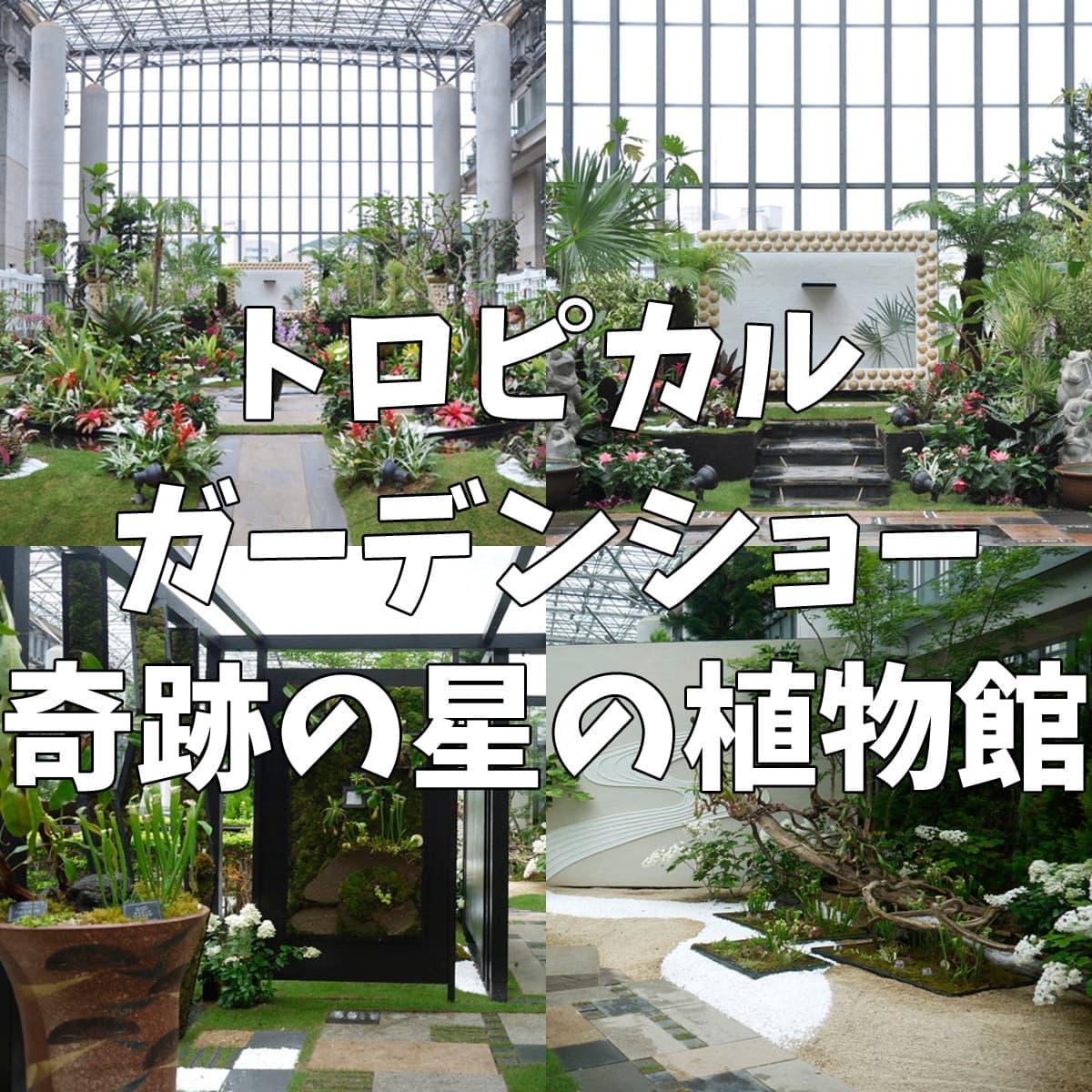 トロピカルガーデンショー 奇跡の星の植物館