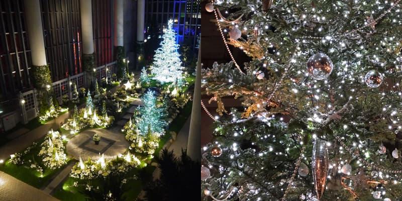 ライトアップ クリスマスフラワーショー